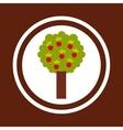 apple tree nature icon vector image