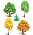 trees in seasons vector image