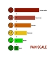 Pain scale chart vector image