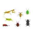 set of european insects vector image