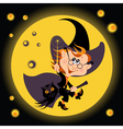 witch halloween boy and his owl vector image
