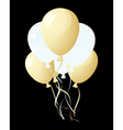 balloons in the air vector image