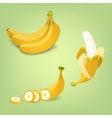 Set of the fresh banana fruit icons vector image