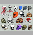 scull heads vector image