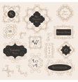 Vintage Decorations Design Elements vector image
