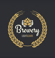 beer label vintage design background vector image