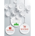 Paper snowflakes vector image vector image