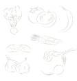 Vegetables sketchy icons vector image