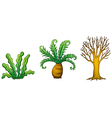 a plant and tree vector image