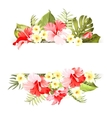 Tripical flowers elements vector image