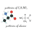 C3H7NO2 zwitterion of alanine amino acid molecule vector image