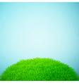summer grass vector image