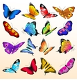 Colorful realistic butterflies big set vector image