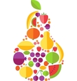 Pear From Fruit vector image