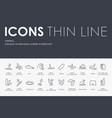 surfing thin line icons vector image