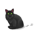 Black cat with footsteps vector image vector image