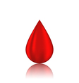 Red blood drop with reflection isolated on white vector image vector image