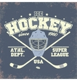 Ice Hockey Badge vector image
