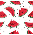 red watermelon slices seamless pattern vector image
