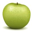 Fresh Green Apple vector image vector image