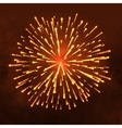 Salute Firework isolated on dark background vector image