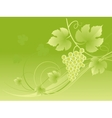Beautiful green grape vine background vector image vector image