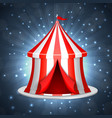 circus ten on a blue background vector image
