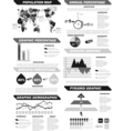 INFOGRAPHIC DEMOGRAPHIC ELEMENTS NEW GREY vector image