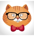 hipster cat glasses and bow vector image