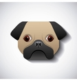 dog pug race design vector image