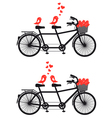 tandem bicycle with birds in love vector image vector image