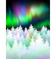 Winter landscape background with northern lights vector image