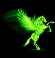 Fair Horse Pegas on hind legs 03 vector image vector image