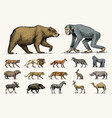 gorilla moose or eurasian elk camel and deer vector image