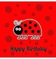 Happy Birthday card with cute lady bug ladybird vector image