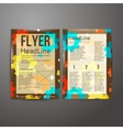 Abstract Brochure Flyer design vector image