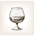 Cognac in glass sketch style vector image