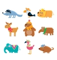 Dressed Animals Set vector image