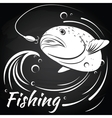 Fish jumping out of water to grab the bait vector image