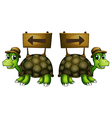 Turtles carrying wooden signboards vector image vector image