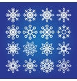 Decorative Snowflakes icon collection vector image