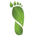 Footprint was made from leaves vector image