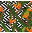 Retro paradise flower pattern background vector image