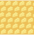 cheese pattern vector image vector image