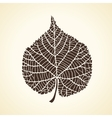 Stylized detail silhouette of leaf isolated on vector image