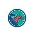 Horse Jockey Racing Circle Retro vector image