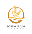 Wheat Logo Template vector image