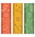 Decorative set floral botanical card banner vector image