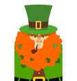 Leprechaun in Green Hat Portrait serious vector image