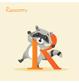 Animal alphabet with raccoon vector image vector image